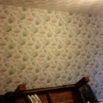 Wallpaper job complete.